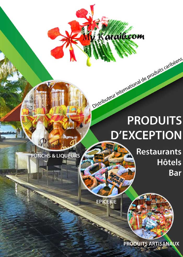 Flyer-1-Entreprise-MY-Karaib-dbng-agence-web-martinique-antille